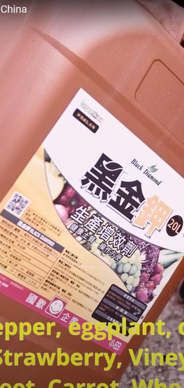 Humic Acid Usage and Exports to China